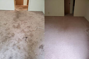 Carpet Cleaning Company Walnut Creek, CA